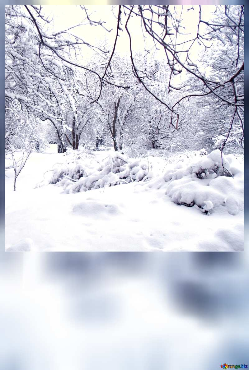 Strong  snow  blank card template №10567
