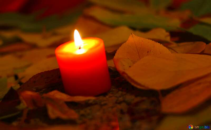 Candle grave leaves №24255