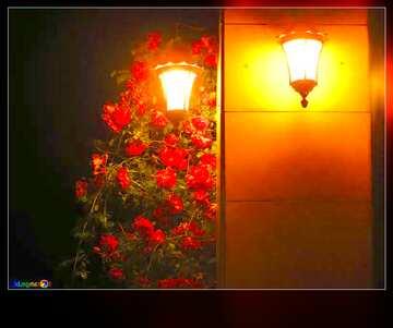 El efecto del espejo. El efecto de la muy luz. Colores muy vivos. Bastidor la falta de definición.