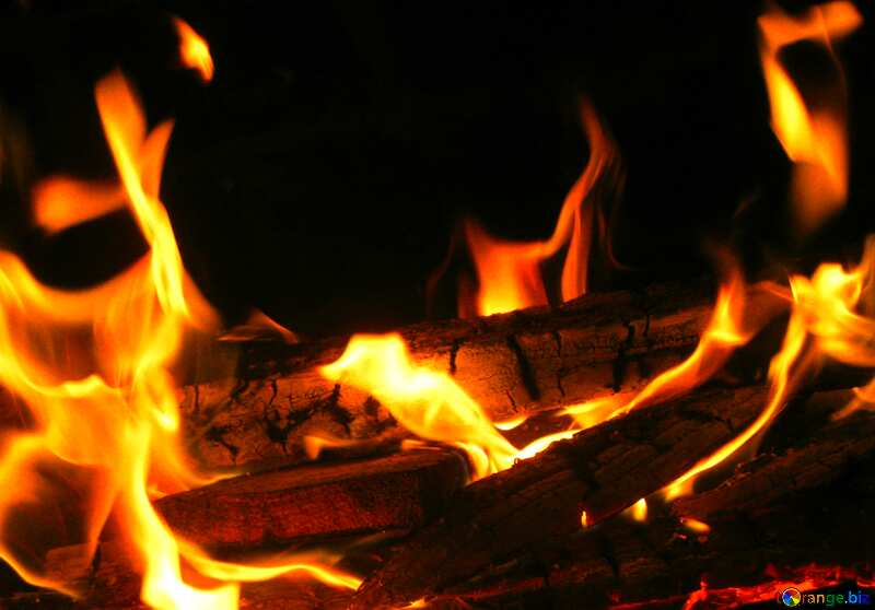 Flame №9381