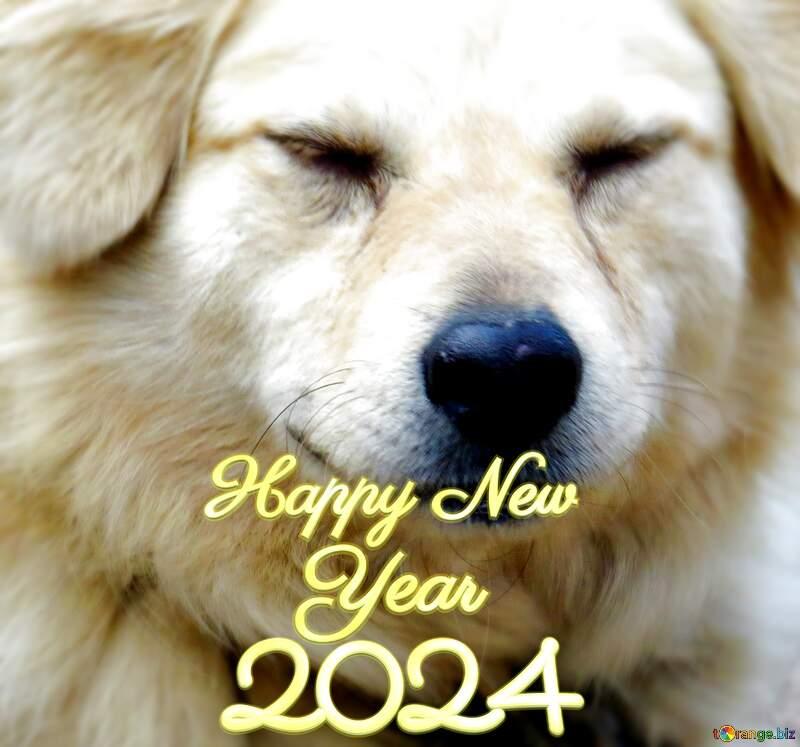 happy new year 2022 dog №23936