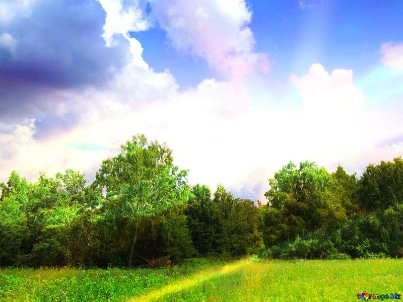 Sunny nature landscape №26725