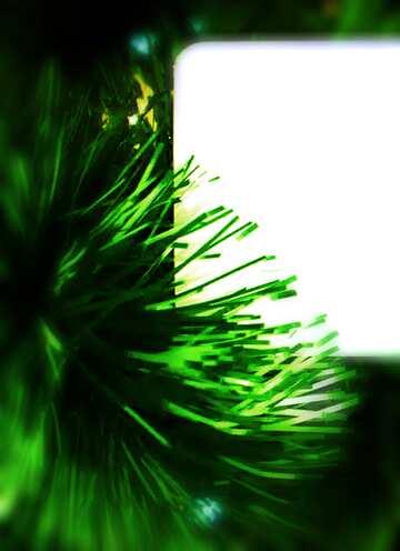 The effect of light. Blur frame. Fragment.