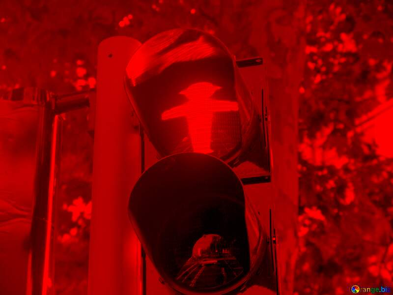 Красный бред №11721