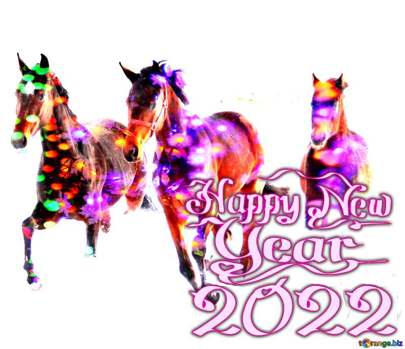 Three horses Happy New Year №3981