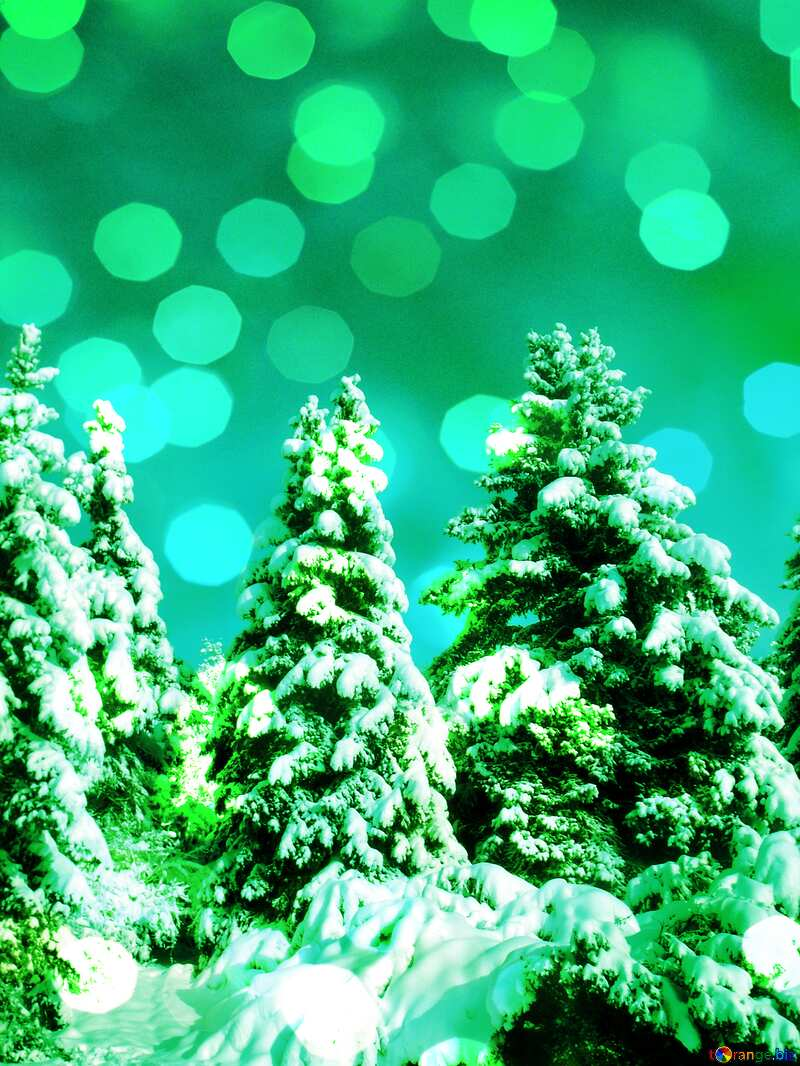 Green Tree  Snow  sun      №10576