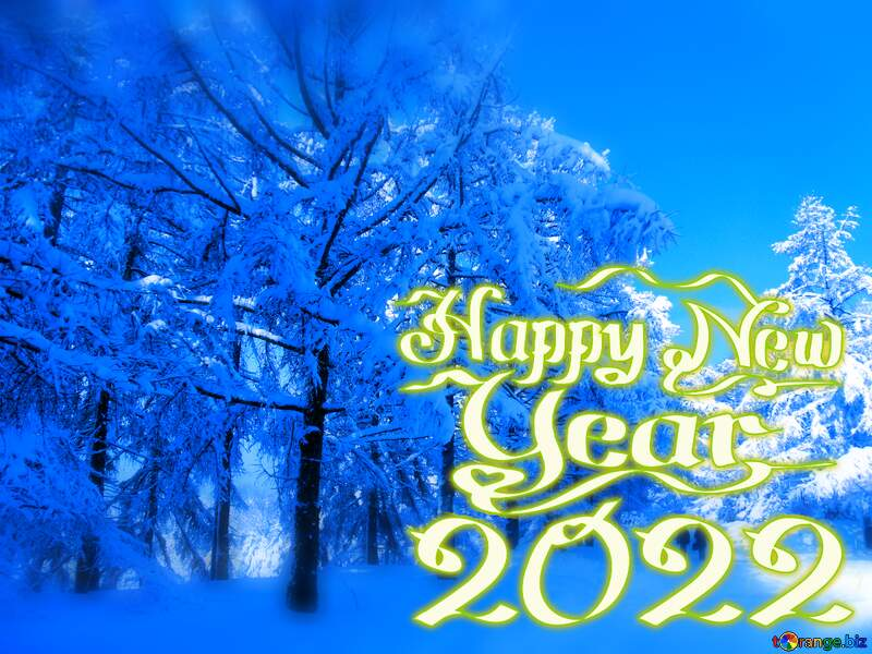 happy new year 2021 Snow Winter blue forest №10568