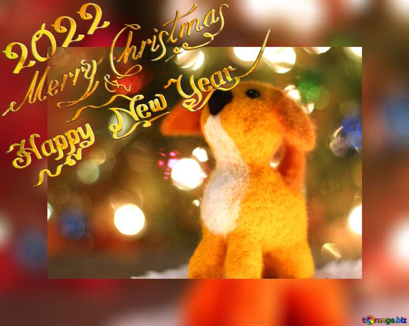 Happy new year 2022  yellow dachshund dog. Copyspace greetings background. №49634