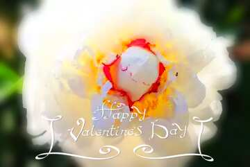The effect of the mirror. The effect of contrast. Very Vivid Colours. Blur frame. Happy Valentine's Day.