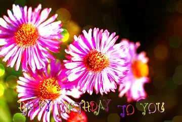 Die Wirkung von Licht. lebendige Farben. Postkarte Alles Gute zum Geburtstag in Englisch.