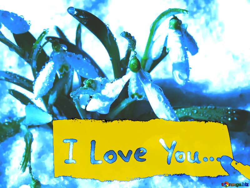 spring blue flowers I love you inscription №38378
