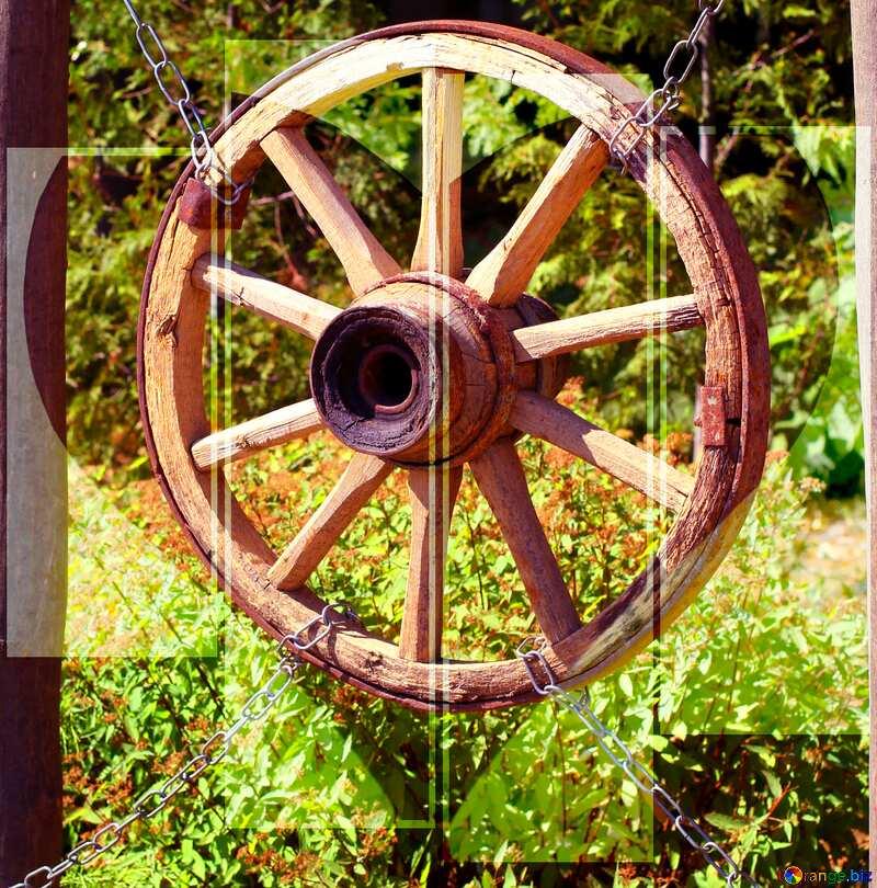 wheel of love №39616
