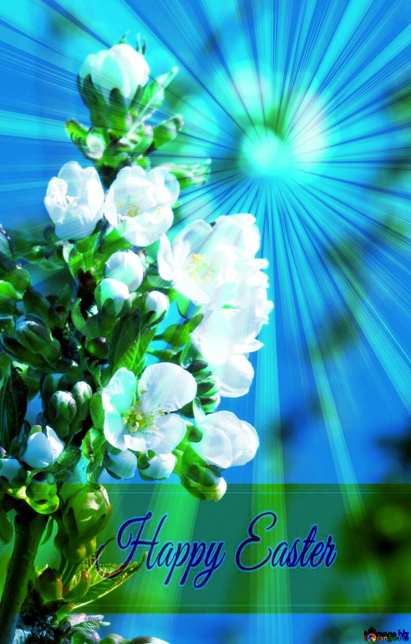 Branch of the delicate flowers Inscription Happy Easter on Background with Rays of sunlight №24481