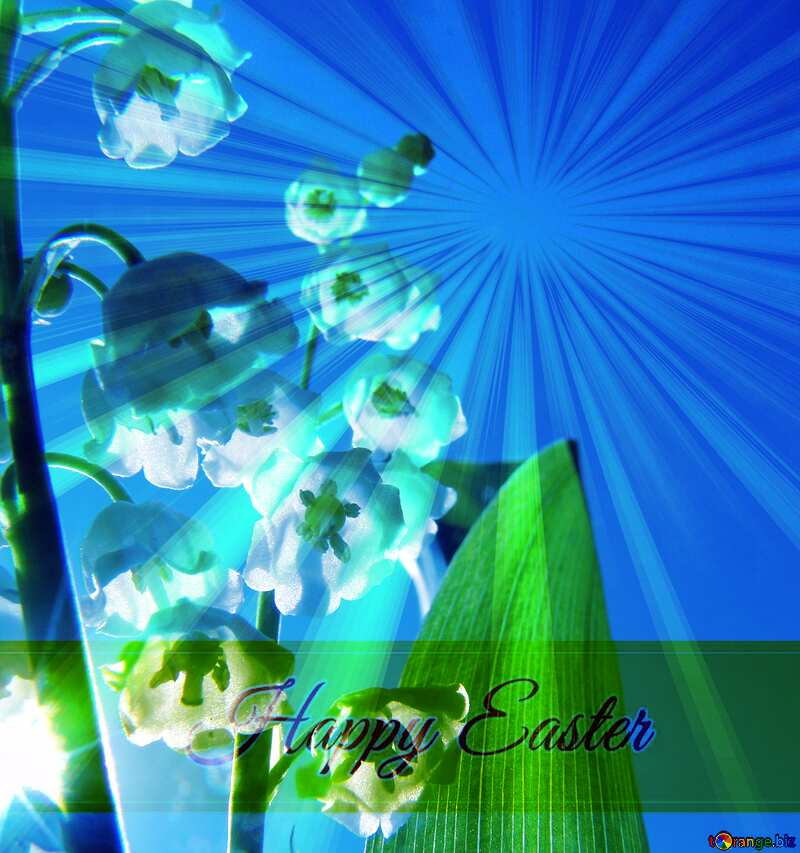Flowers lilies Inscription Happy Easter on Background with Rays of sunlight №5313