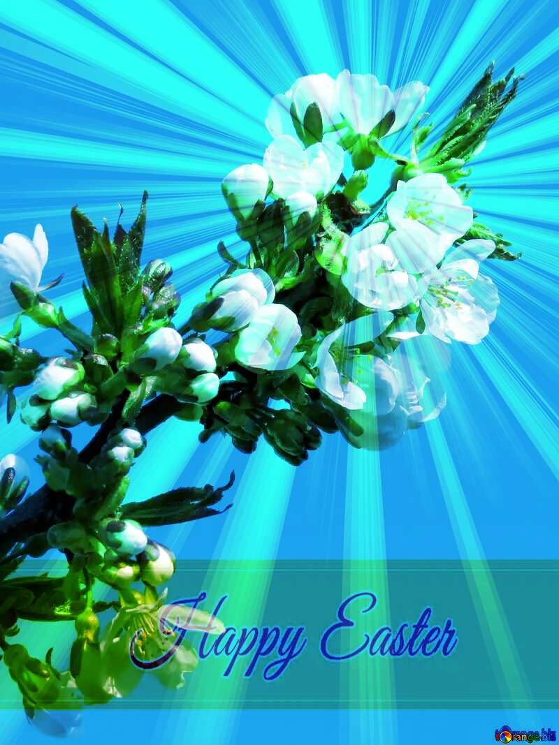 Flowers Trees Inscription Happy Easter on Background with Rays of sunlight №24405