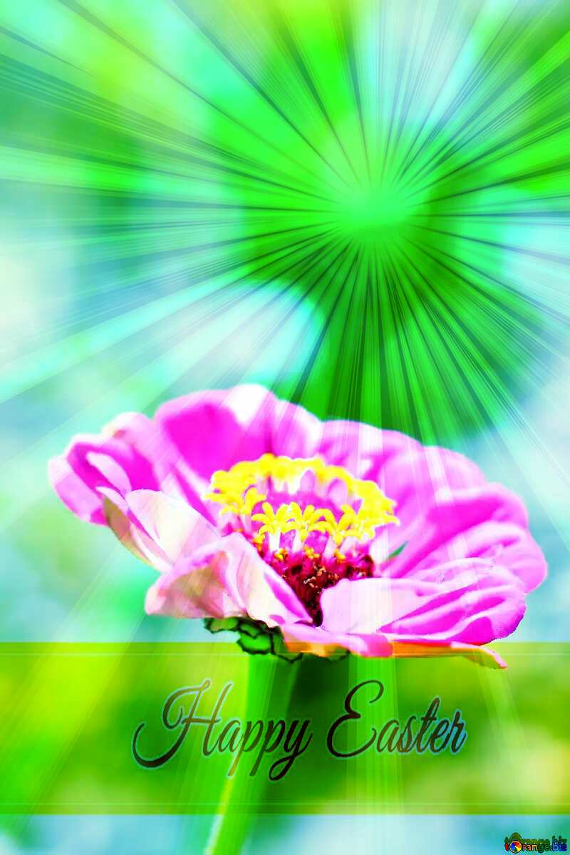 Major flower Inscription Happy Easter on Background with Rays of sunlight №33439