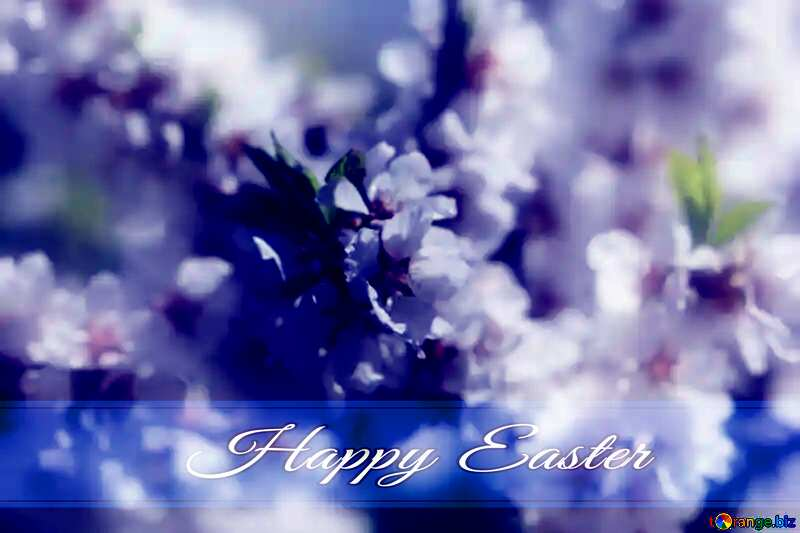 Spring blooming background Blue card with Inscription Happy Easter №39771