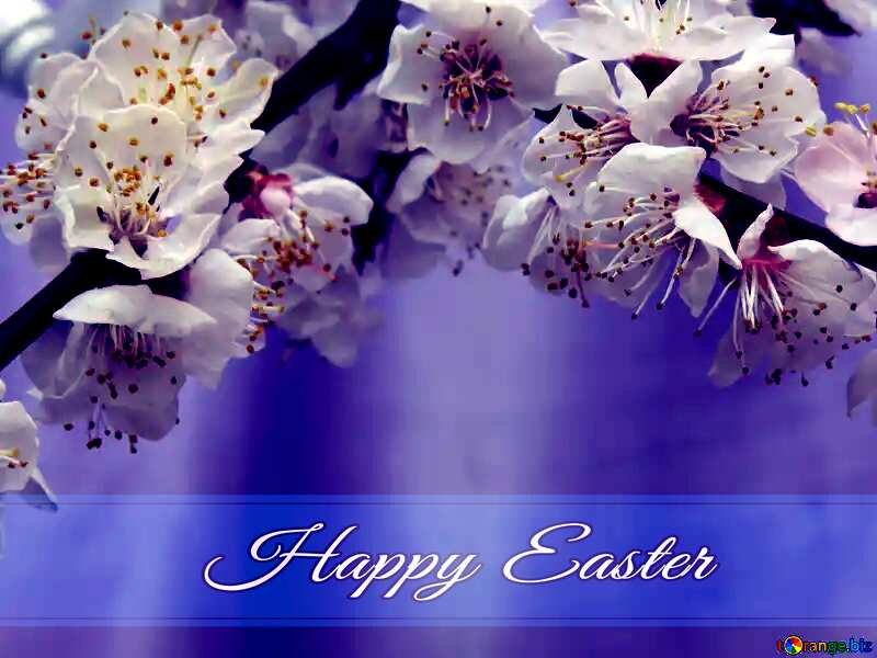 Spring blossoms Blue card with Inscription Happy Easter №30029