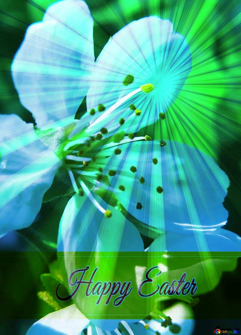 Spring flower Inscription Happy Easter on Background with Rays of sunlight №24064
