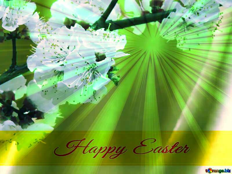 Spring flowering tree Inscription Happy Easter on Background with Rays of sunlight №29950