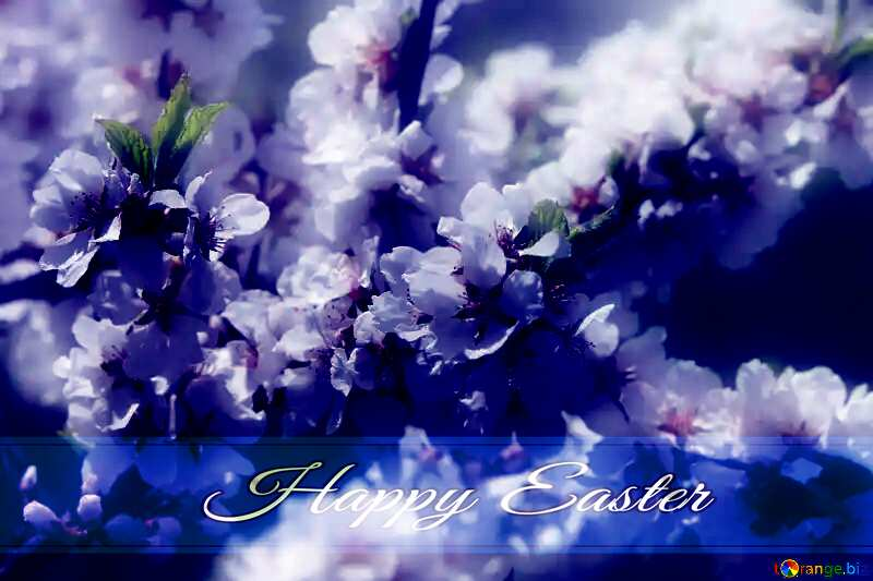 Spring pictures on wallpaper for desktop Blue card with Inscription Happy Easter №39775