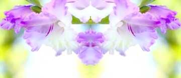 Die Wirkung von viel Licht. Sehr klare Farben. Bruchstück. Schablone.