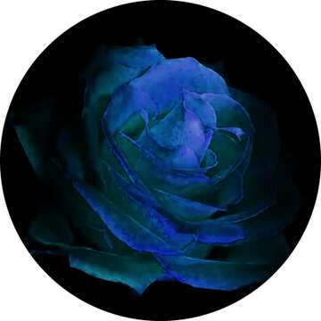 The effect of rotation. The effect of the hard dark. The effect of stained blue. Fragment. Frame circle.