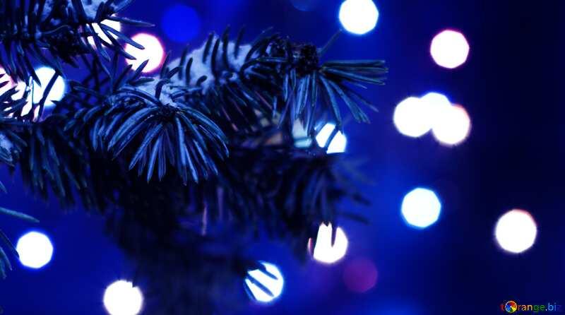 Die besten bild. Weihnachtsbaum. №15316