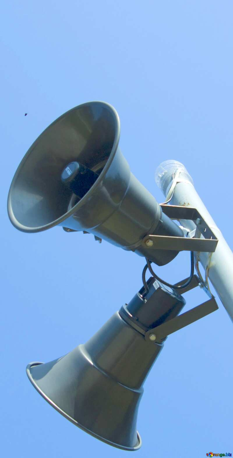 Image for profile picture Speaker. №12903