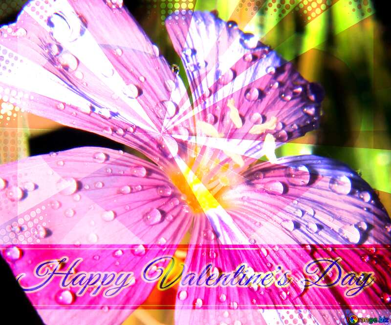 Beautiful flower background for the cover of the Greeting card retro style background Lettering Happy Valentine`s Day №33411