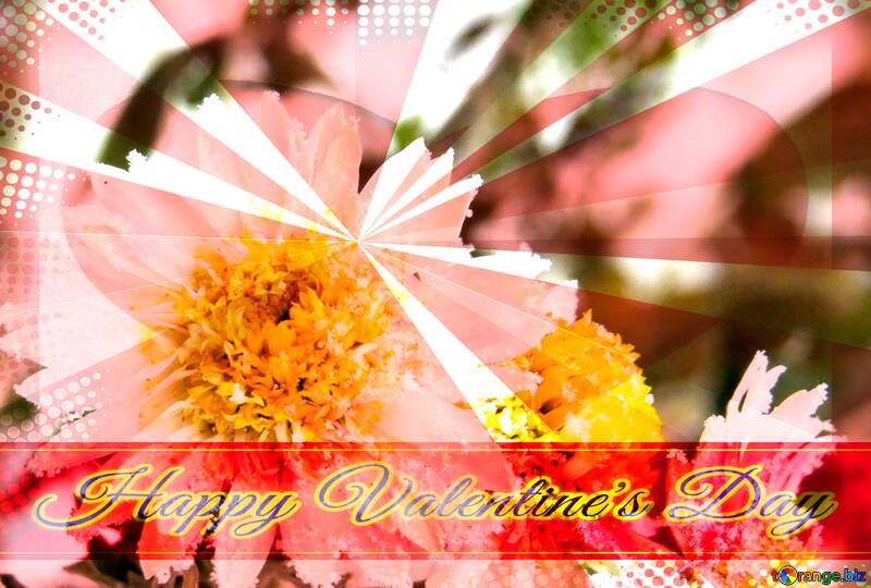 Flower macro Frost Greeting card retro style background Lettering Happy Valentine`s Day №38118
