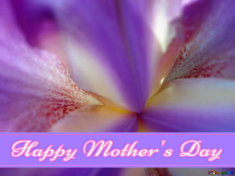 Macro flower background Pretty Lettering Happy Mothers Day №46879