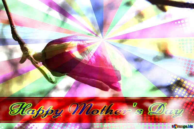 Spring Flower r Birch Magnolia Retro style card for Happy Mother`s Day with Colors rays №39728