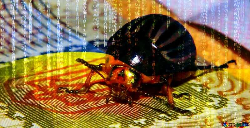 Colorado potato beetle on the coat of arms of Ukraine Ukrainian hackers №32135