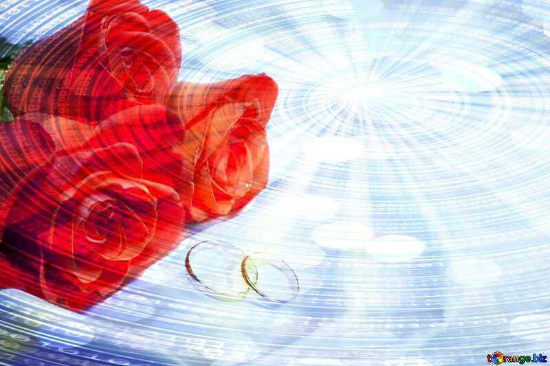 Wedding festive  card Digital Binary data  bokeh background №7235