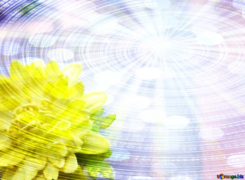Yellow flower  Digital Binary data  bokeh background №48635