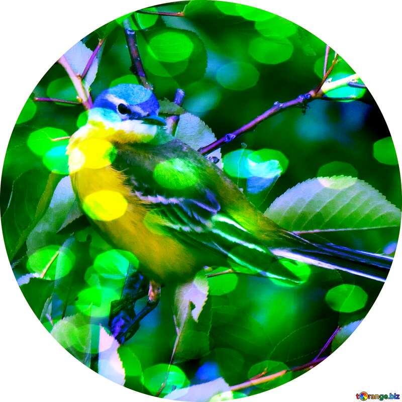 Bird in circle №28274
