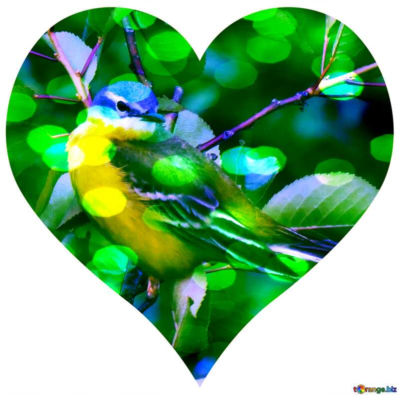 Bird in heart №28274