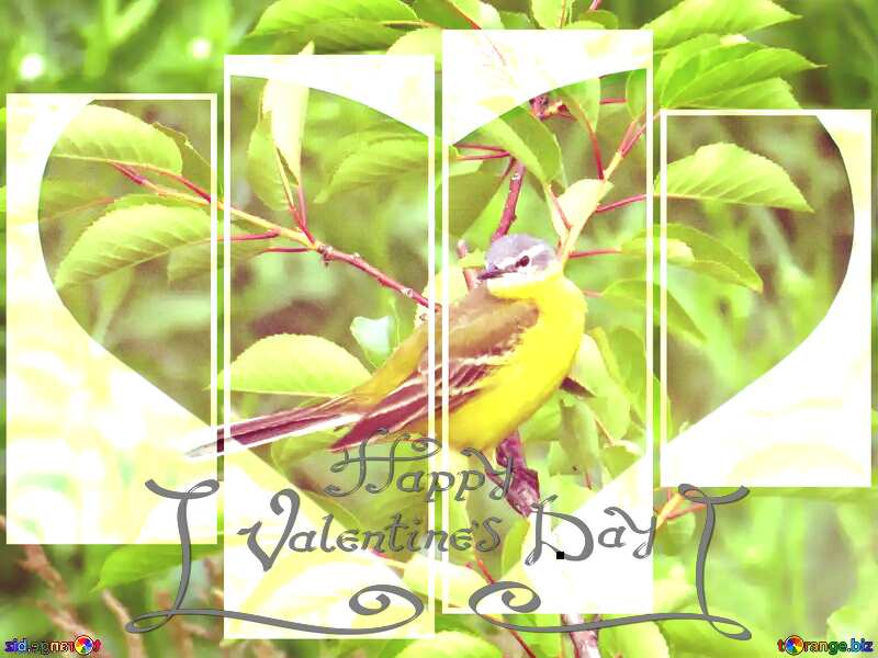 Yellow bird Love happy valentines Greeting Card №28274