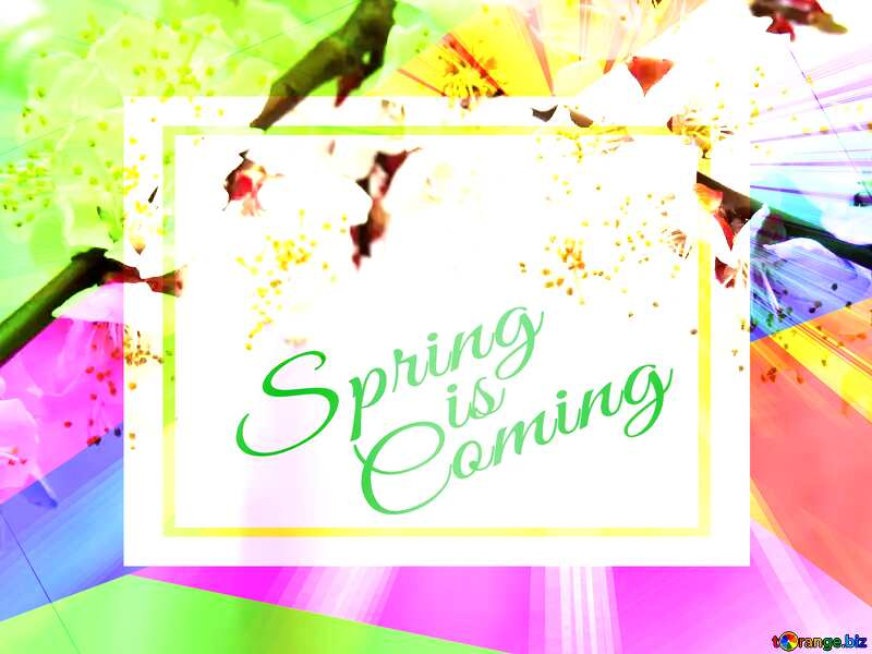 Spring blossoms Colorful illustration template frame with Rays of sunlight and Lettering Spring is Coming №30029
