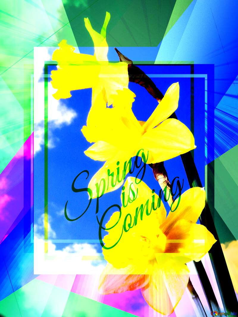 Spring bouquet Colorful illustration template frame with Rays of sunlight and Lettering Spring is Coming №30957