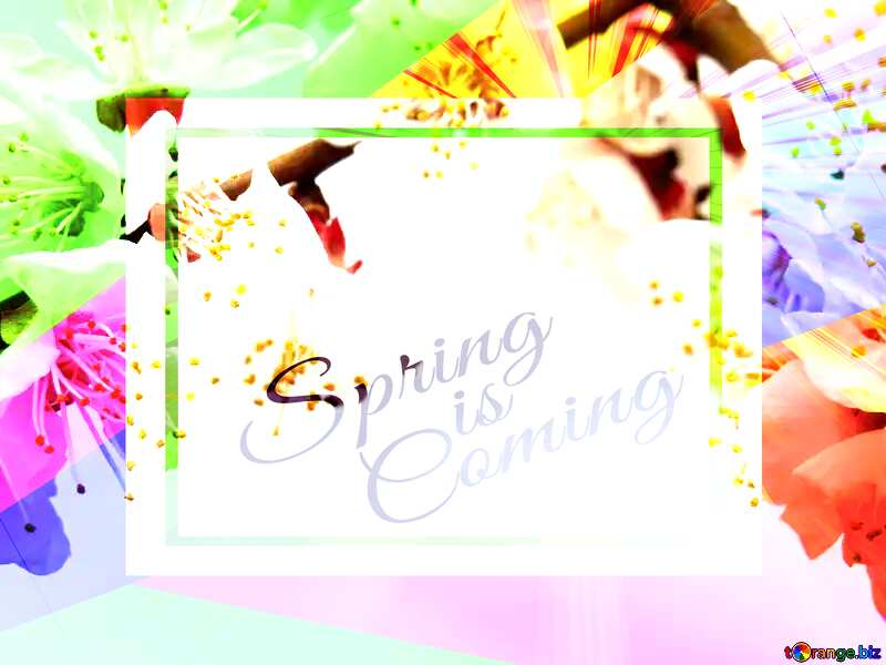 Spring flowers on the tree template card frame with inscription Spring is Coming №30025