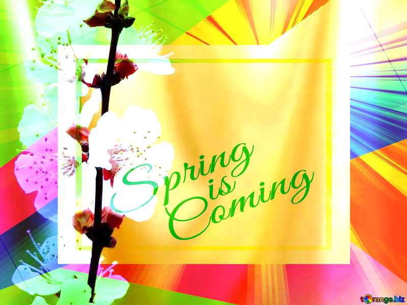 Spring golden background Colorful illustration template frame with Rays of sunlight and Lettering Spring is Coming №29937