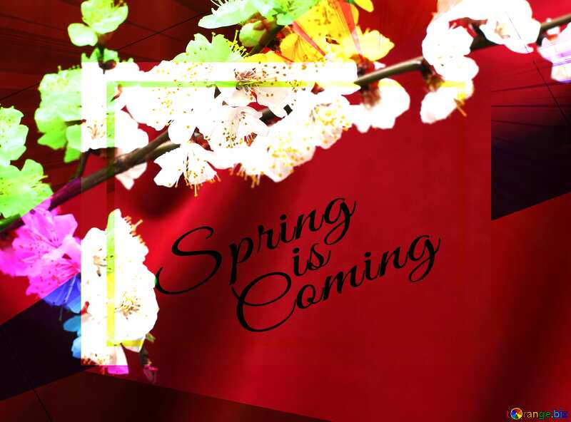 Spring branch on the desktop Colorful illustration template frame with Rays of sunlight and Lettering Spring is Coming №29872