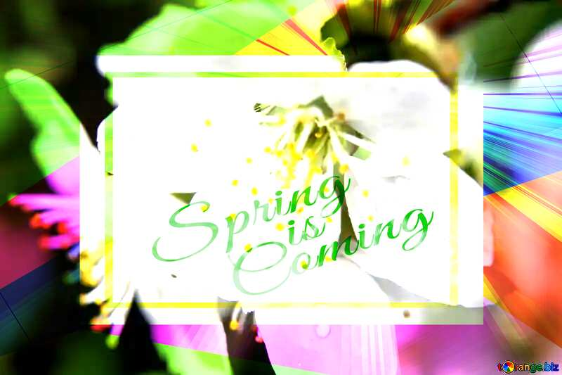 Spring rain Colorful illustration template frame with Rays of sunlight and Lettering Spring is Coming №27071