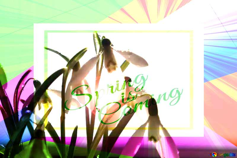 Wallpapers early spring Colorful illustration template frame with Rays of sunlight and Lettering Spring is Coming №38294