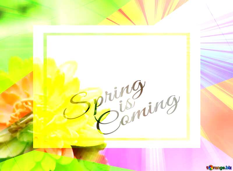 Yellow flower of foamirana Colorful illustration template frame with Rays of sunlight and Lettering Spring is Coming №48635
