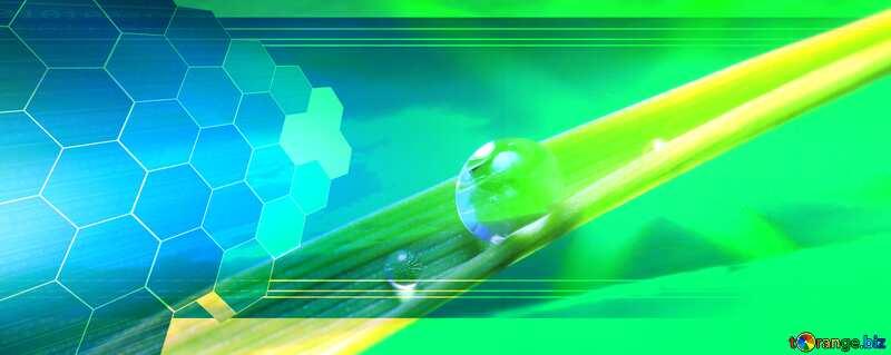 Dew drop science Tech business information concept image for presentation №31107