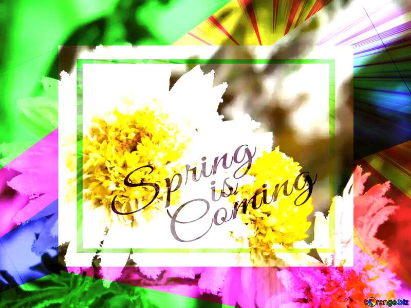 Flower macro Frost template card frame with inscription Spring is Coming №38118