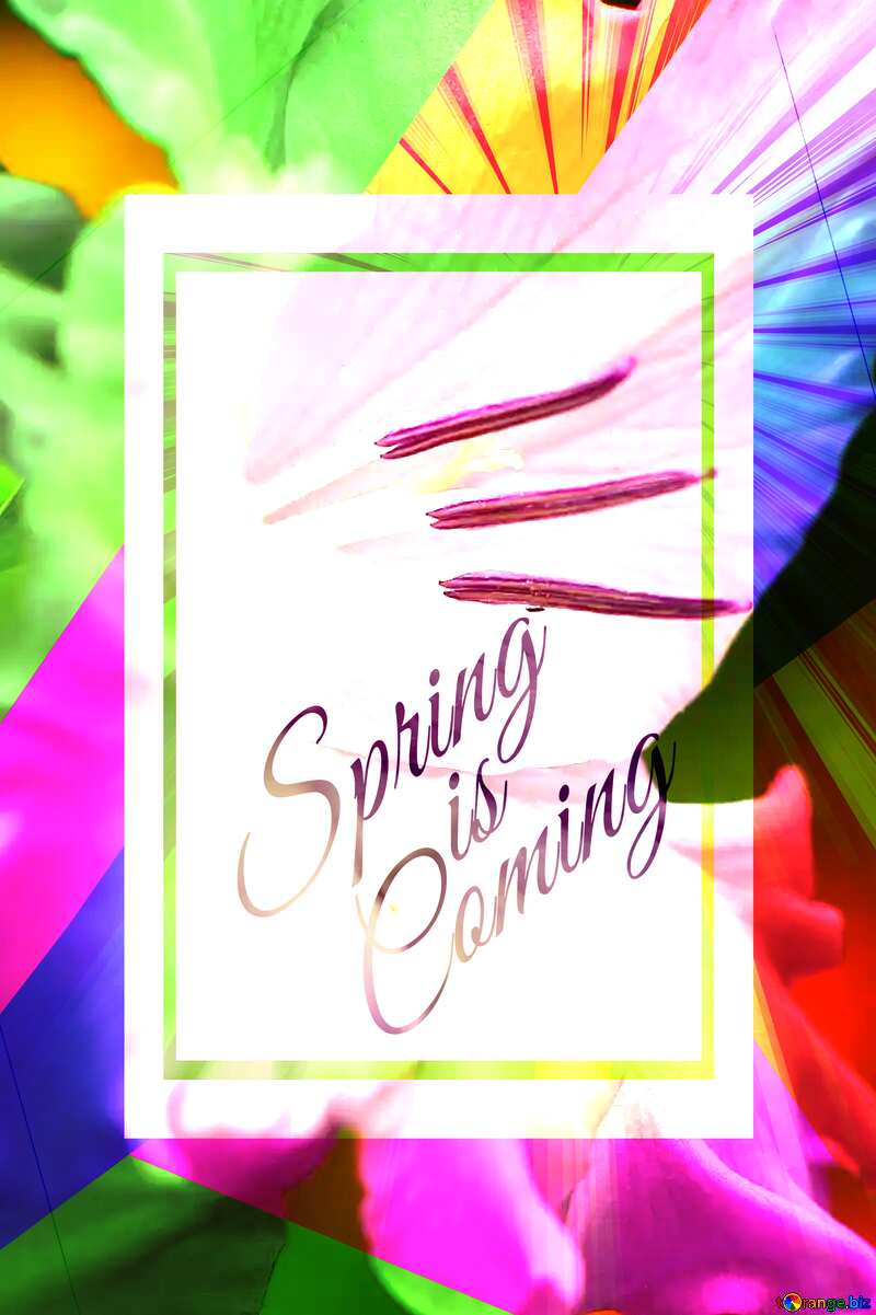 Flower macro template card frame with inscription Spring is Coming №33752